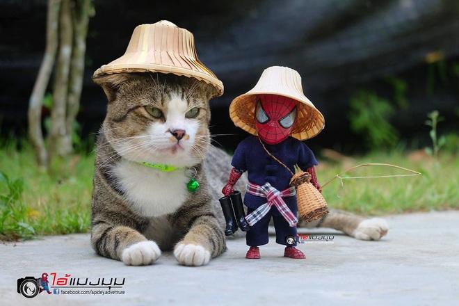 Cưng muốn xỉu với bộ ảnh chuyến phiêu lưu của boss mèo và sen Spider-Man - Ảnh 30.