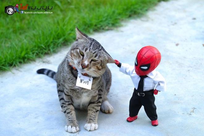 Cưng muốn xỉu với bộ ảnh chuyến phiêu lưu của boss mèo và sen Spider-Man - Ảnh 9.