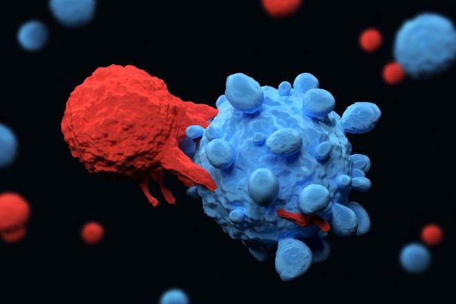 Trung Quốc: Kỹ thuật lập trình tế bào gốc giúp tấn công và tiêu diệt ung thư - Ảnh 3.