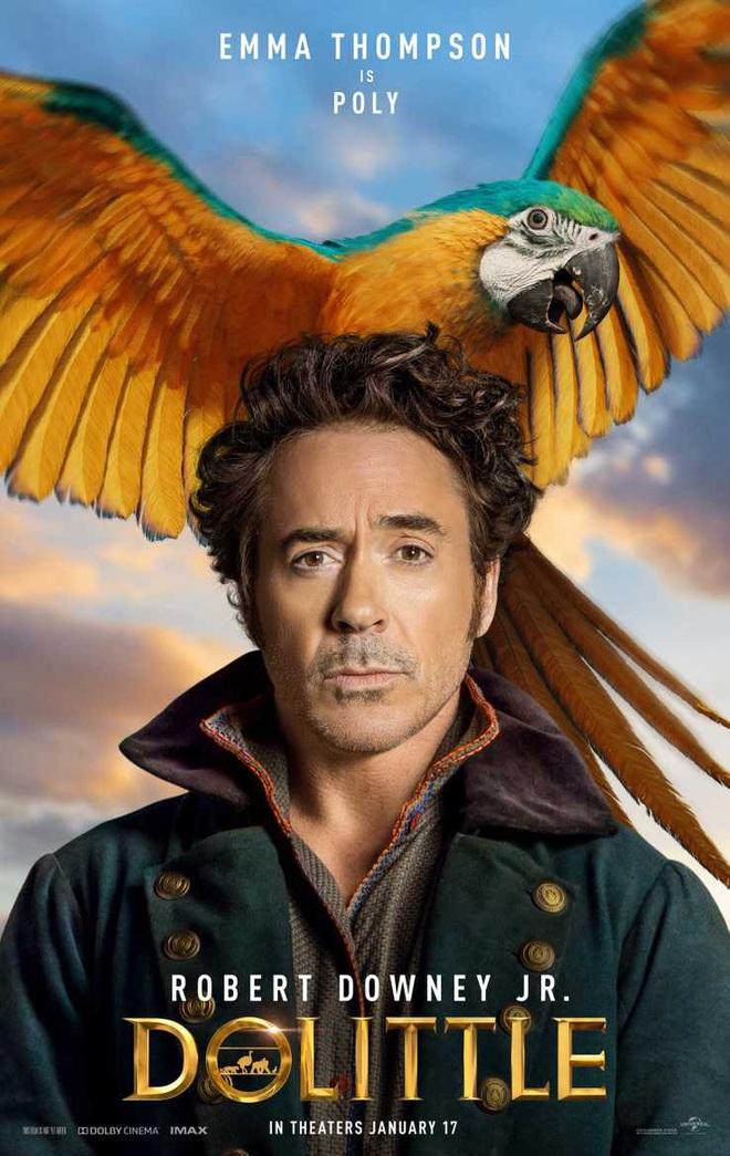 Iron Man Robert Downey Jr sắp hội ngộ với Spider-Man Tom Holland trong dự án phim mới, ra mắt ngay tháng 1/2020 - Ảnh 5.