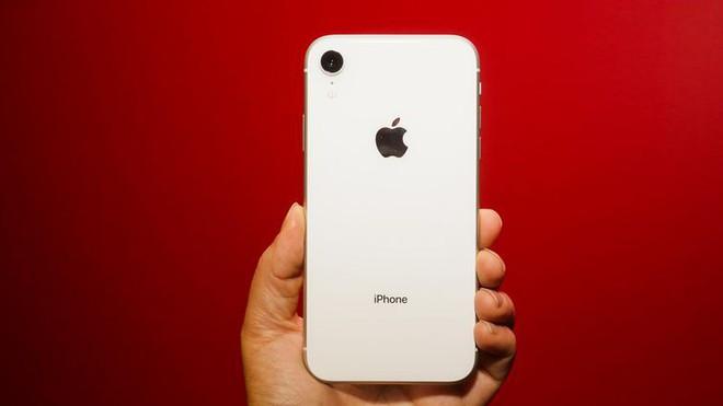 So sánh camera iPhone: iPhone 11 với ma thuật Deep Fusion vs. iPhone XR - Ảnh 1.