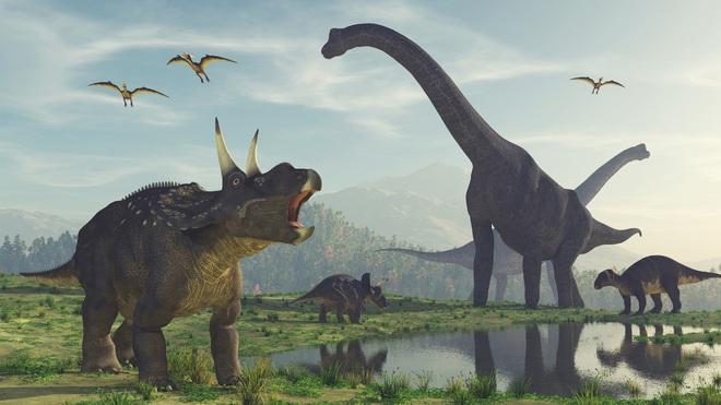 Vì sao động vật tiền sử lại to lớn gấp nhiều lần động vật ngày nay? - Ảnh 1.
