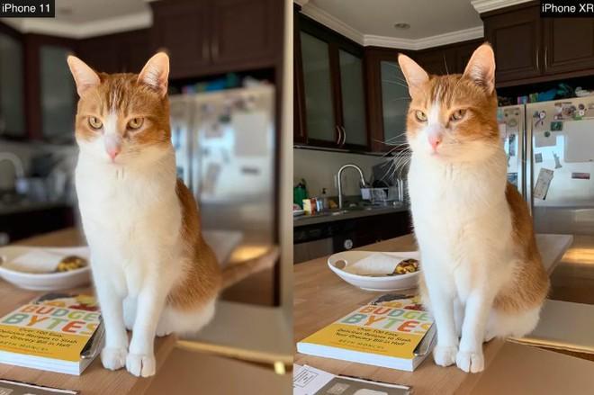 So sánh camera iPhone: iPhone 11 với ma thuật Deep Fusion vs. iPhone XR - Ảnh 18.