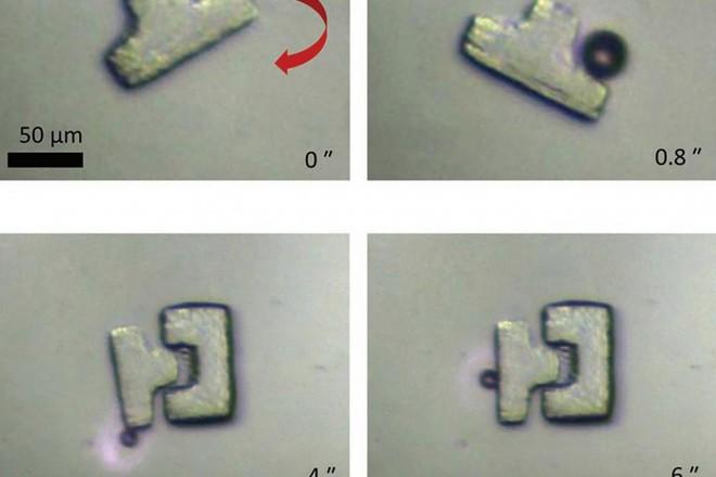 Trung Quốc: Chế tạo thành công robot thao tác trên quy mô micromet với độ chính xác cao nhất từ trước đến nay - Ảnh 1.
