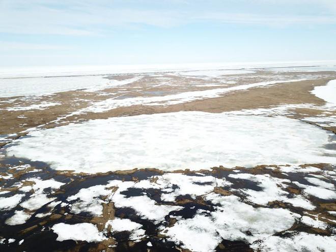 Một kỹ sư muốn phủ hàng triệu hạt thủy tinh nhỏ lên Bắc Cực, phản chiếu ánh sáng Mặt Trời để ngăn băng tan chảy - Ảnh 3.