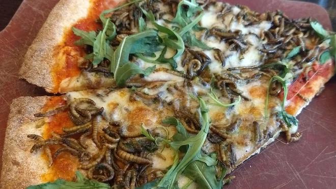 Nhân viên Google được thử nghiệm món pizza sâu miễn phí, người ăn thử chia ra làm hai nửa yêu - ghét rõ ràng - Ảnh 1.
