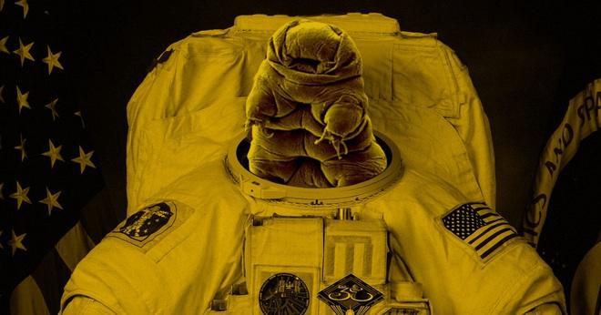 Cấy DNA của gấu nước cho các phi hành gia sẽ giúp họ sống được trên Sao Hỏa? - Ảnh 4.