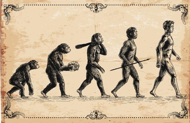 Phát hiện hài cốt sinh vật lạ có chân người và cánh tay vượn, được cho là tổ tiên loài người cách đây 12 triệu năm - Ảnh 1.