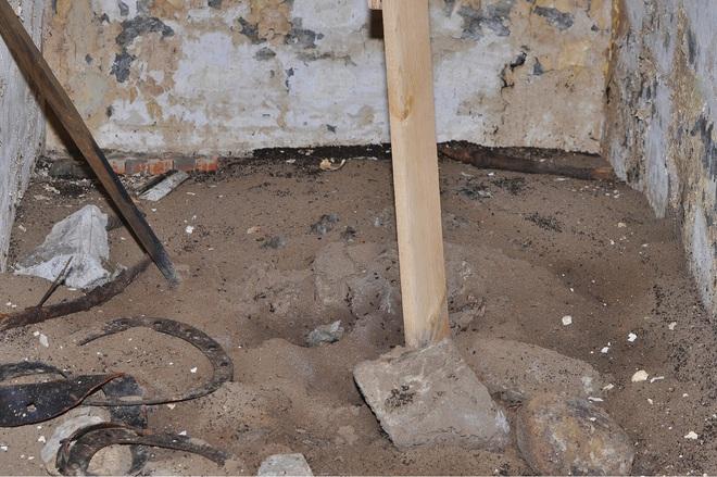 Bốn triệu con kiến bị mắc kẹt dưới hầm hạt nhân thời Liên Xô, chúng đã làm thế nào để sống? - Ảnh 6.