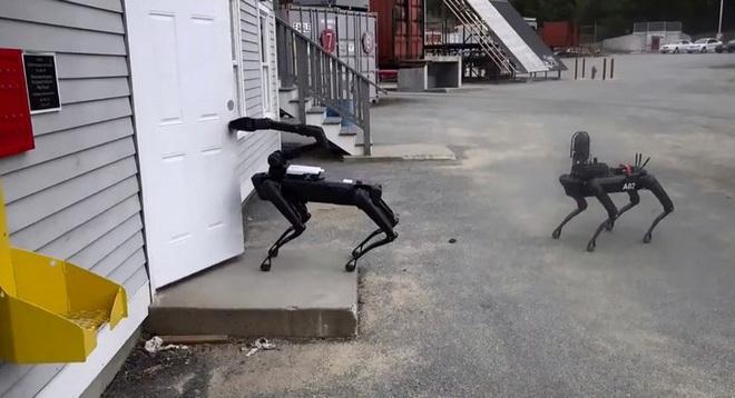 Chó robot của Boston Dynamics lần đầu tham gia vào biệt đội phá bom của cảnh sát Mỹ - Ảnh 2.