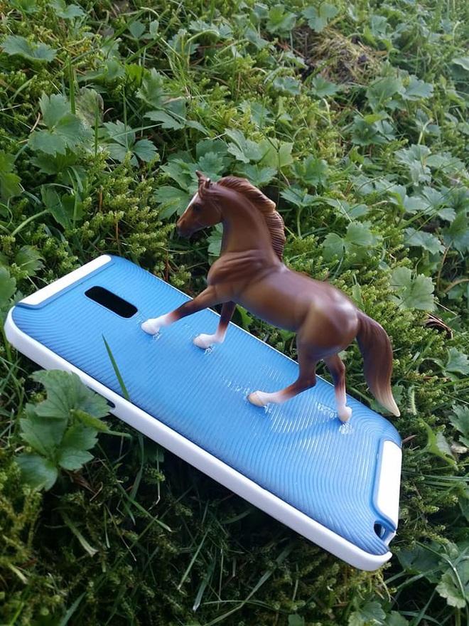Internet cười bò với chùm ảnh của cô nàng dán con ngựa đồ chơi vào ốp lưng điện thoại nhưng lại che mất camera sau - Ảnh 2.