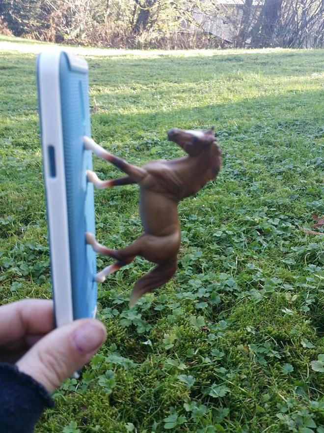 Internet cười bò với chùm ảnh của cô nàng dán con ngựa đồ chơi vào ốp lưng điện thoại nhưng lại che mất camera sau - Ảnh 3.