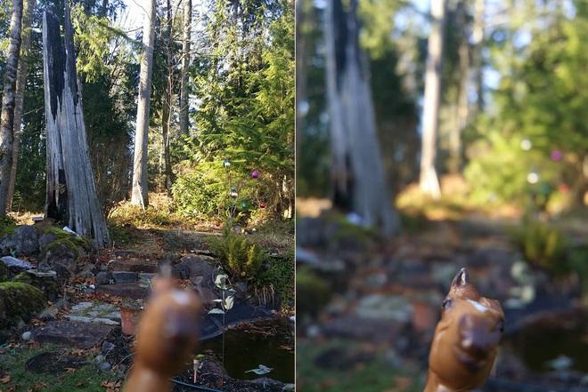 Internet cười bò với chùm ảnh của cô nàng dán con ngựa đồ chơi vào ốp lưng điện thoại nhưng lại che mất camera sau - Ảnh 9.