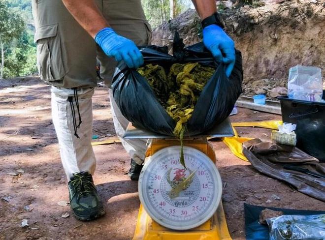 Vấn nạn rác thải nhựa ngày càng nhức nhối: Một con nai vừa chết chỉ vì ăn phải 7kg nhựa - Ảnh 4.