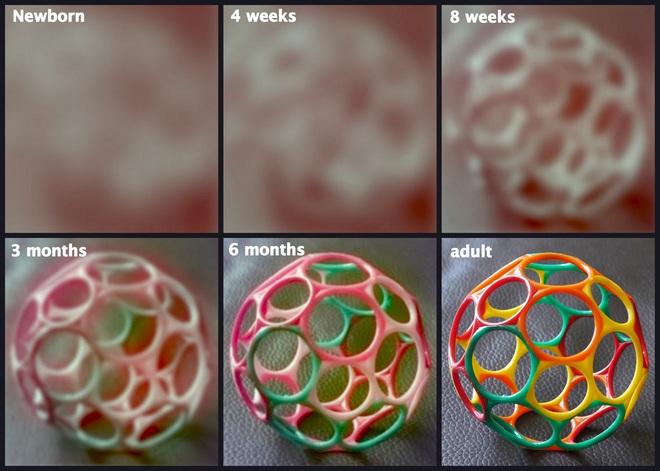 Những thí nghiệm thú vị trong lịch sử tiết lộ 5 sự thật ít biết về thị giác trẻ sơ sinh - Ảnh 2.