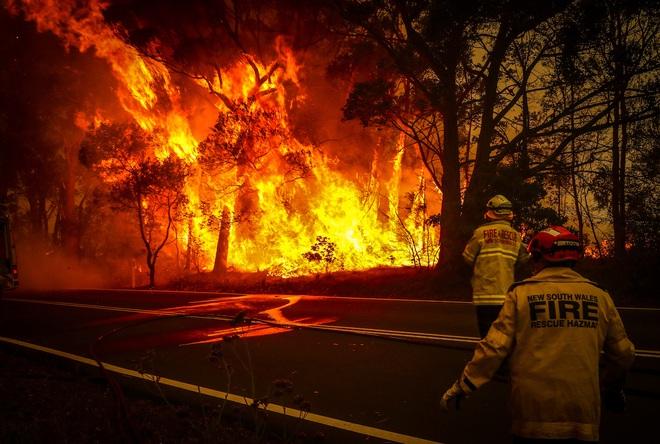 Úc: Giữa lúc nắng nóng kéo dài do biến đổi khí hậu, bác nông dân xui xẻo còn bị kẻ gian cuỗm mất 300.000 lít nước sạch - Ảnh 3.