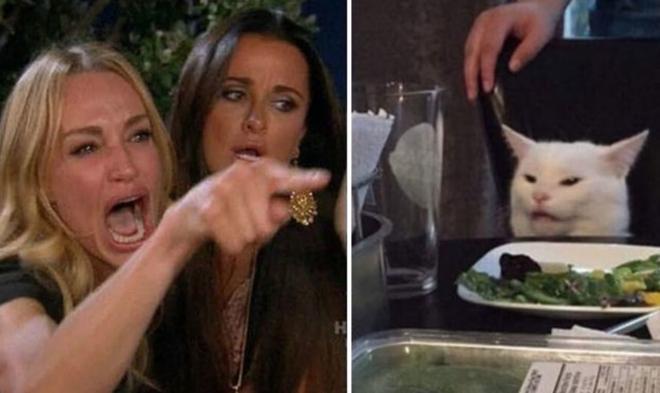 Chú mèo trắng Smudge đã sản sinh ra chiếc meme đình đám cô gái la con mèo như thế nào - Ảnh 1.