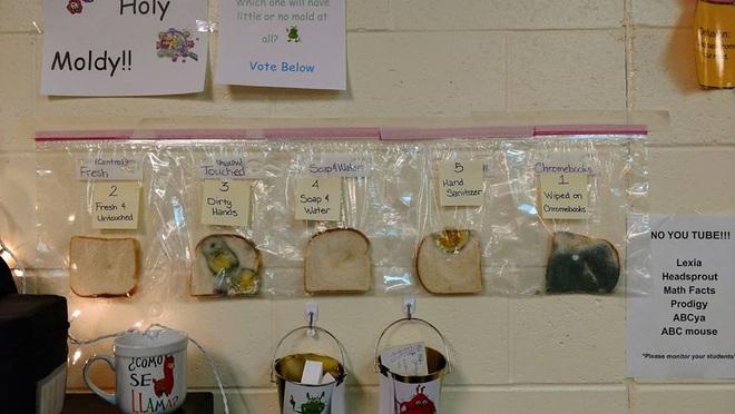 Thí nghiệm đơn giản với bánh mì tiết lộ tầm quan trọng của việc rửa tay trước khi ăn - Ảnh 1.