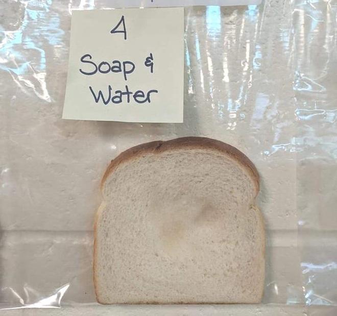 Thí nghiệm đơn giản với bánh mì tiết lộ tầm quan trọng của việc rửa tay trước khi ăn - Ảnh 4.