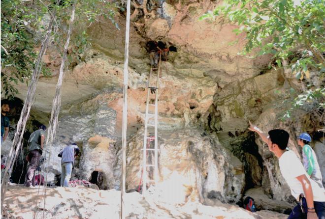 Phát hiện tác phẩm nghệ thuật lâu đời nhất thế giới trong hang động ở Indonesia - Ảnh 1.