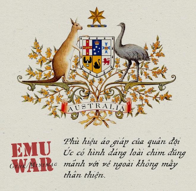 Chiến tranh Emu: thảm bại của quân đội Úc khi cố gắng đối đầu với những con chim vô cùng kỳ lạ - Ảnh 6.
