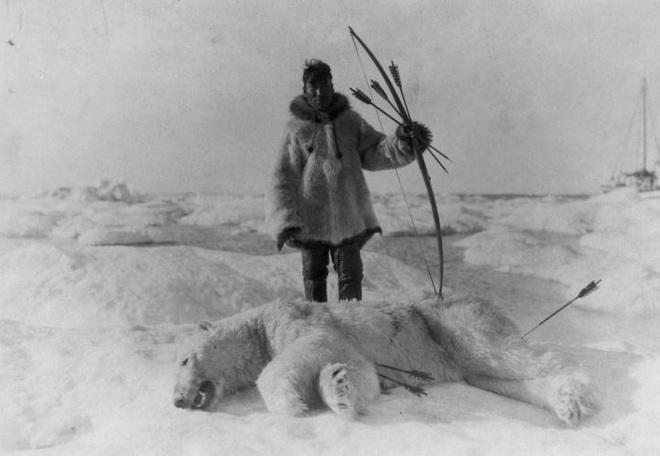 Chuyện kì lạ ở Nam Cực, ăn gan động vật có thể dẫn tới tử vong - Ảnh 2.