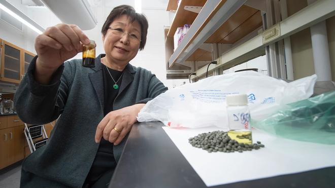 Sử dụng nước, các nhà nghiên cứu tìm ra cách biến 90% lượng rác thải nhựa thành nhiên liệu sạch - Ảnh 1.