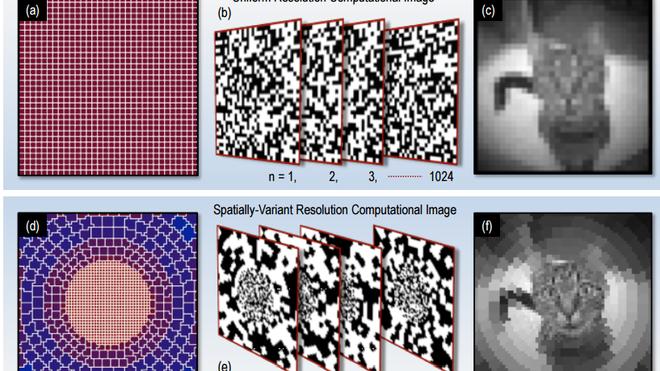 Sử dụng AI, các nhà khoa học có thể mô phỏng cách nhìn của người chỉ với 1 điểm ảnh - Ảnh 2.