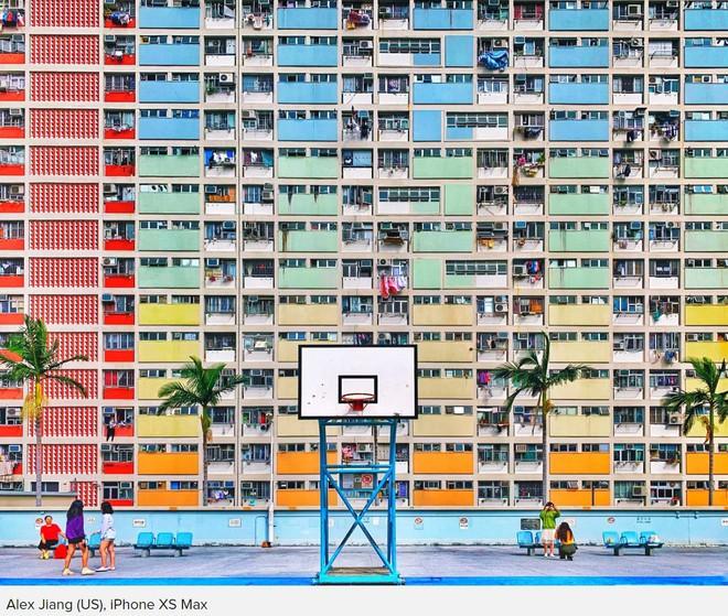 Những bức ảnh chiến thắng cuộc thi 'Shot on iPhone' cho ta thấy sự sáng tạo luôn có giá trị hơn thiết bị chụp hình - Ảnh 2.