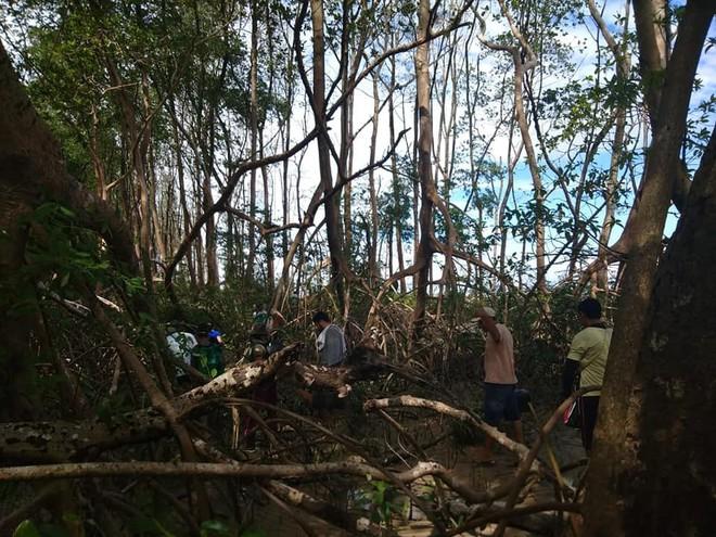 Xác cá voi dài 8m được phát hiện giữa rừng rậm Amazon khiến dân tình ngáo ngơ chẳng hiểu gì - Ảnh 1.