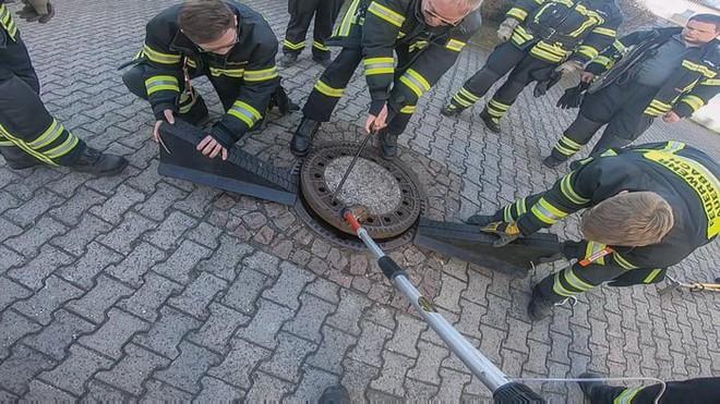 Đức: Chuột béo đến nỗi mắc kẹt ở nắp cống, 7 lính cứu hỏa phải toát mồ hôi mới cứu được - Ảnh 6.