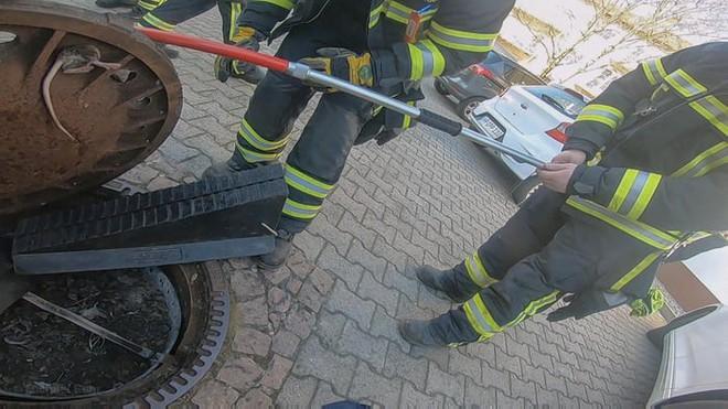 Đức: Chuột béo đến nỗi mắc kẹt ở nắp cống, 7 lính cứu hỏa phải toát mồ hôi mới cứu được - Ảnh 7.