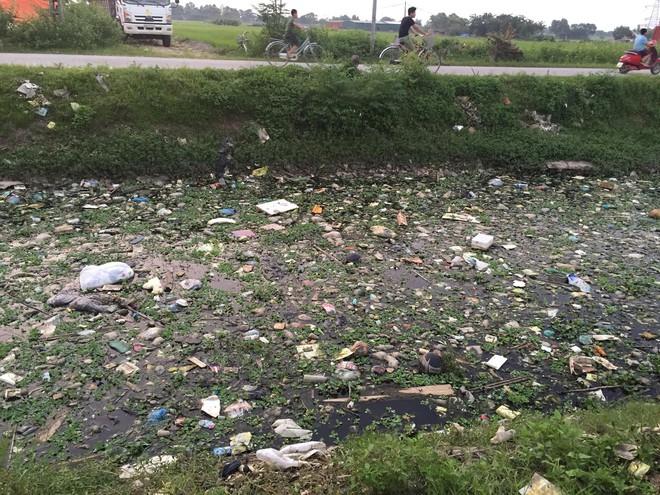 Cơn sốt thử thách dọn rác lan tỏa ở Việt Nam và tín hiệu đáng mừng về sự biến mất của những bãi rác lớn - Ảnh 3.