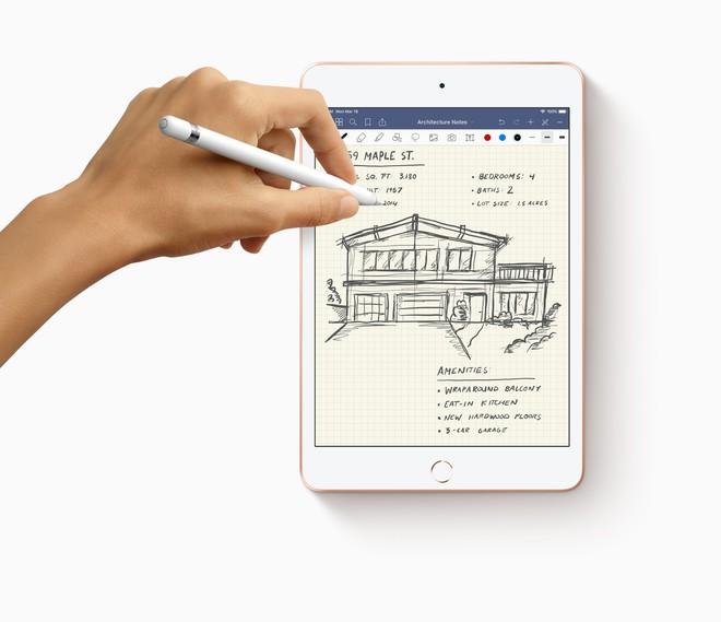 iPad Air và iPad mini mới chỉ hỗ trợ Apple Pencil đời đầu, vậy làm sao để phân biệt iPad nào tương thích với bút gì? - Ảnh 1.
