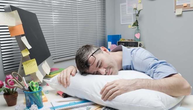 Bạn muốn lấy lại hiệu suất làm việc vào buổi chiều? Hãy ngủ trưa sao cho khoa học - Ảnh 1.