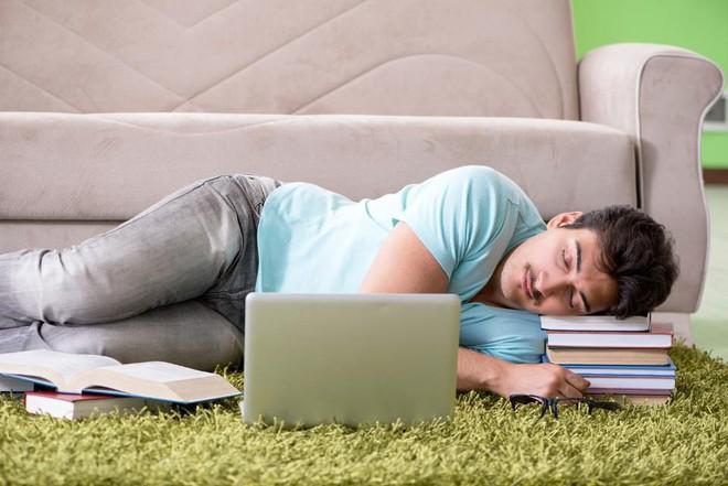 Bạn muốn lấy lại hiệu suất làm việc vào buổi chiều? Hãy ngủ trưa sao cho khoa học - Ảnh 2.