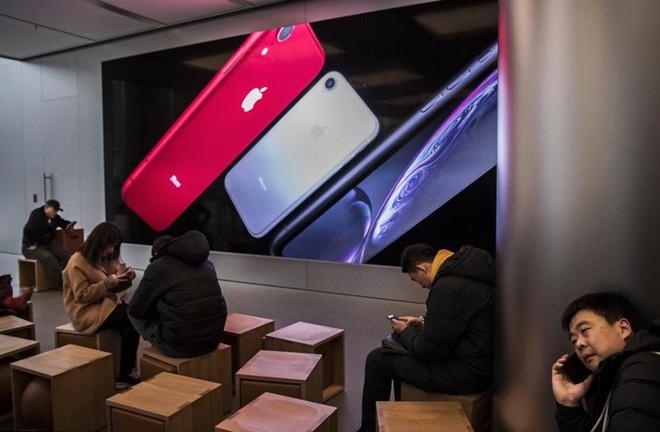 Chuyên gia nhận định sai lầm trong chiến lược kinh doanh của Steve Jobs, đã đến lúc CEO Tim Cook phải sửa sai - Ảnh 2.