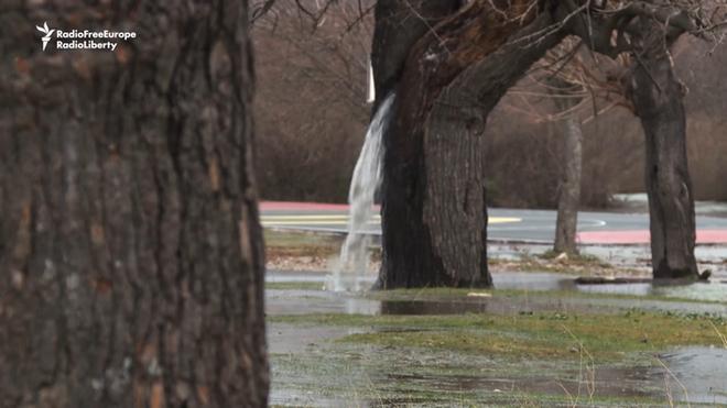 Sau mỗi trận mưa, cây ở làng này lại biến thành đài phun nước. Tại sao lại thế? - Ảnh 1.