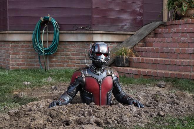 Đằng sau giả thuyết cực mệt trên Reddit: Ant-Man thu nhỏ rồi hóa khổng lồ xé tan bàn tọa của Thanos - Ảnh 3.