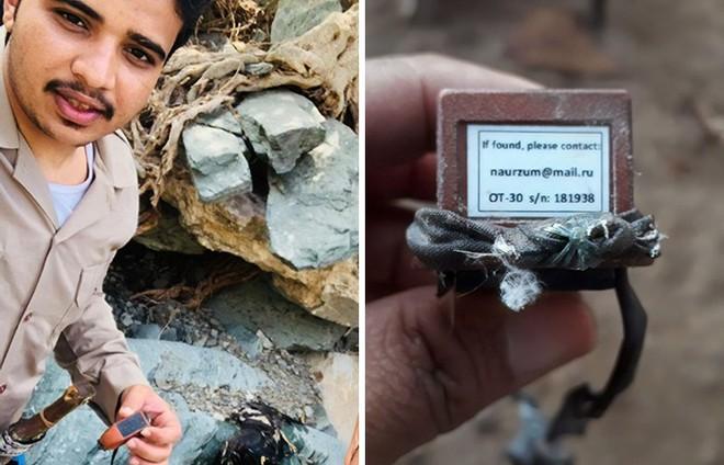 Con đại bàng với thiết bị GPS cho thấy hành trình ngàn dặm của nó sau 20 năm đáng nể như thế nào - Ảnh 2.