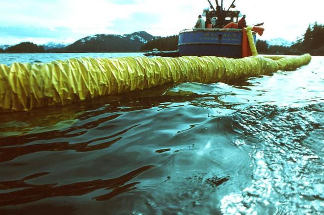 Sau 30 năm, những bức ảnh từ thảm họa tràn dầu Exxon Valdez vẫn còn gây ám ảnh - Ảnh 4.