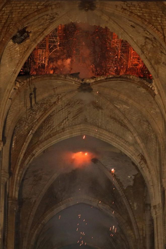 Nước Pháp không còn cây gỗ đủ cao để phục chế mái nhà thờ Đức Bà - Ảnh 4.