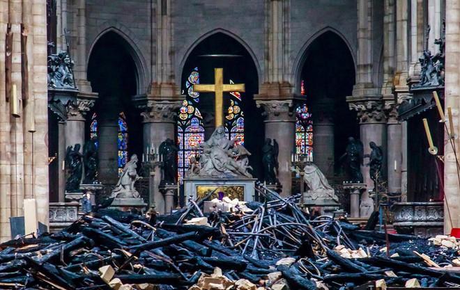 Nước Pháp không còn cây gỗ đủ cao để phục chế mái nhà thờ Đức Bà - Ảnh 3.