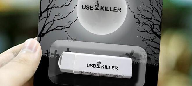 Du học sinh lĩnh án 10 năm tù vì dùng USB sát thủ phá hoại 66 máy tính nhà trường - Ảnh 1.