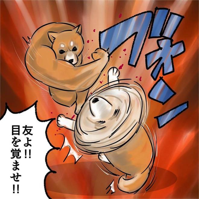 Khoảnh khắc chú chó Shiba quay đầu tung nắm đấm không trượt phát nào như Saitama bất ngờ gây sốt trên MXH - Ảnh 3.