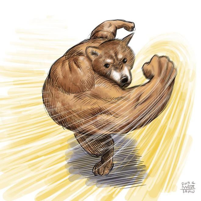 Khoảnh khắc chú chó Shiba quay đầu tung nắm đấm không trượt phát nào như Saitama bất ngờ gây sốt trên MXH - Ảnh 5.