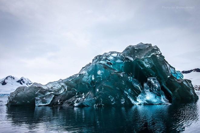 Cực độc tảng băng ngọc lục bảo tuyệt mỹ ở Nam Cực: Phải may mắn lắm mới có thể bắt gặp khoảnh khắc này! - Ảnh 7.