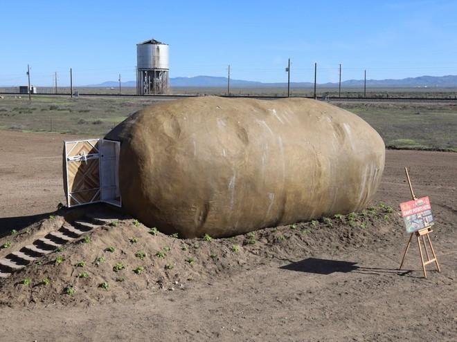 Củ khoai tây nặng 6 tấn gây sốt khi biến thành phòng Airbnb với giá 4,6 triệu/đêm - Ảnh 1.