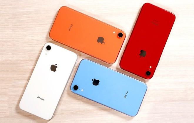 Apple giảm giá gần 6 triệu đồng cho iPhone XR tại Ấn Độ để cạnh tranh với Galaxy S10e - Ảnh 2.