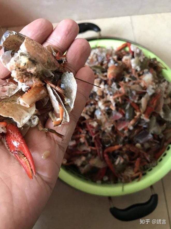 Tin mẹo rửa hải sản bằng máy giặt trên TikTok, cặp vợ chồng gây ra cái chết thương tâm cho 2,5kg tôm hùm đất - Ảnh 2.